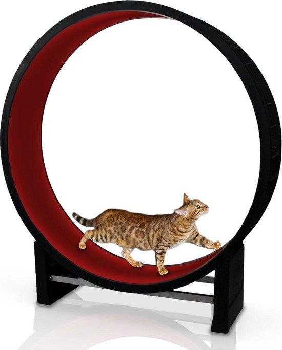 Kat in beweging. Loopwiel voor katten - CanadianCat Company   Rood