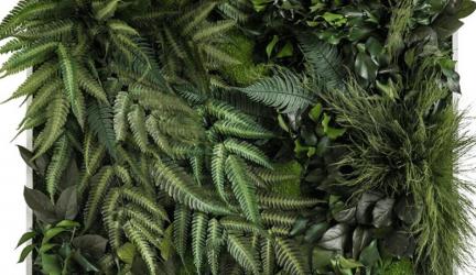 Verticale Plantenbak een plantenmuur is de nieuwe tuin trend