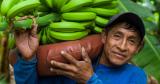 Fairtrade of Bio? Wat is beter?