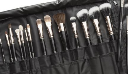 Professionele make up kwasten, ook als set in een etui